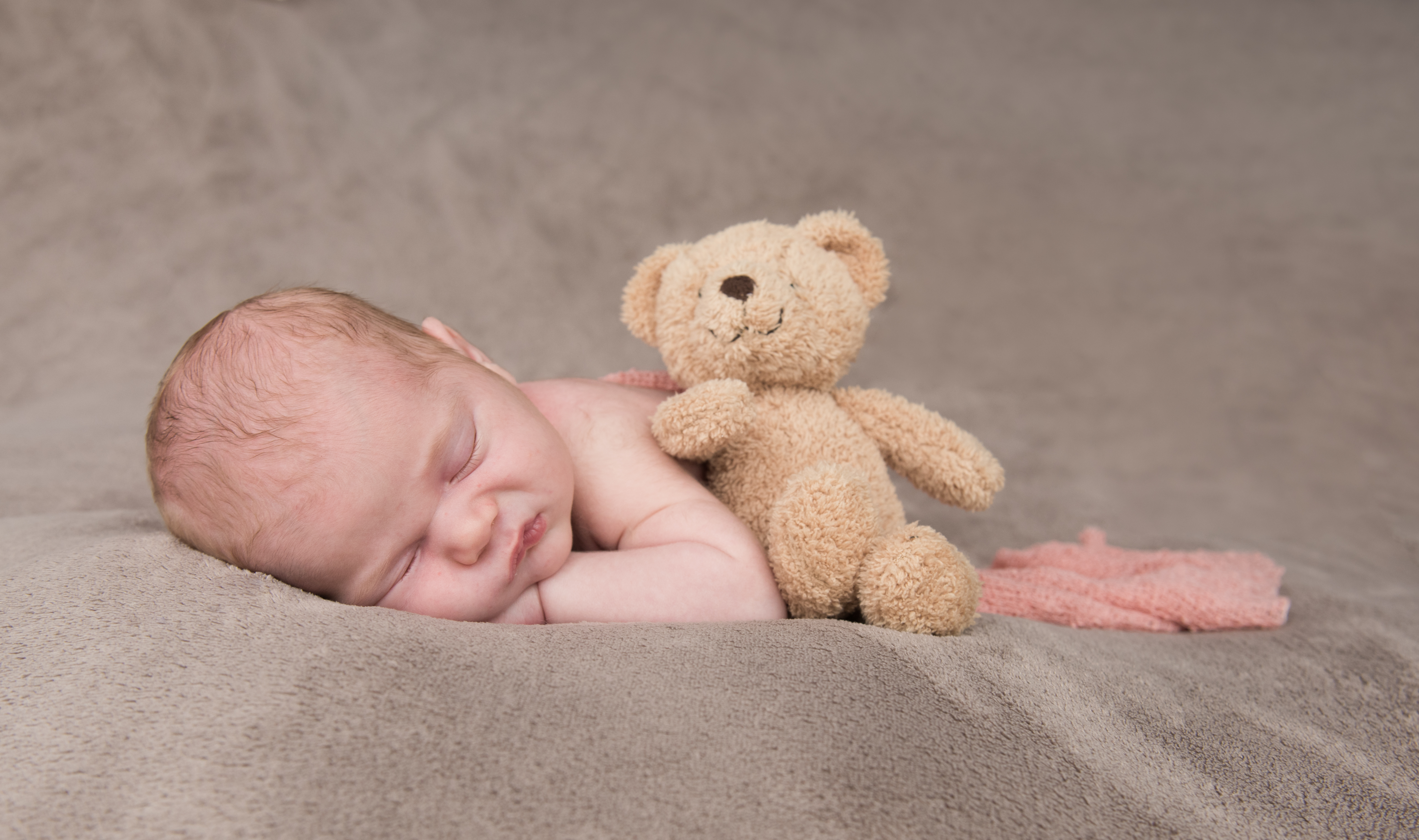 Bear for baby